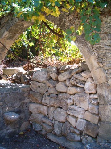 old arch in the garden filled up